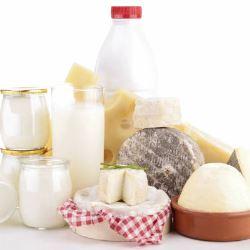dieta sem lactose_17430_41689