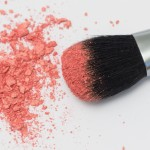 blush-brush-2_1024x1024
